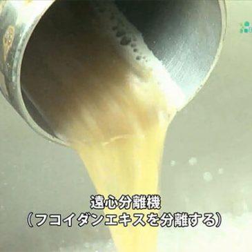 Fucoidan dạng nước