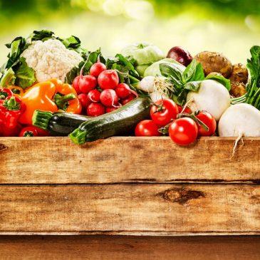 """Dinh dưỡng đầy đủ là """"cơ sở"""" phòng chống ung thư"""